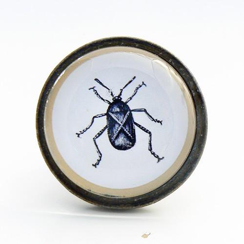 Bouton de meuble insecte cafard cabinet de curiosit s - Bouton de meuble en verre ...