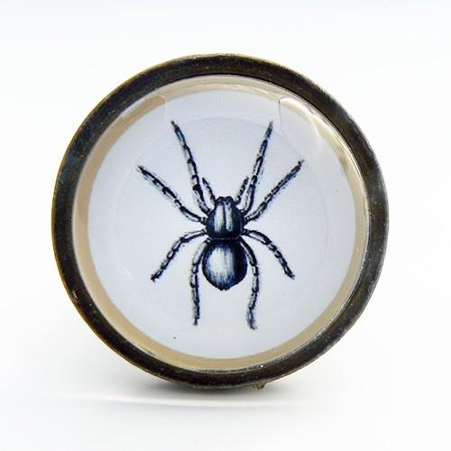 Bouton de meuble insecte araign e cabinet de curiosit s for Meuble cabinet de curiosite
