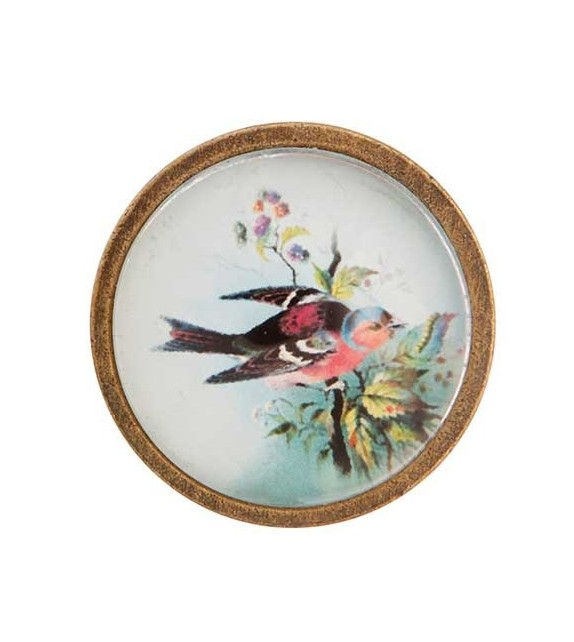 Bouton de meuble Oiseau coloré - Cabochon de verre