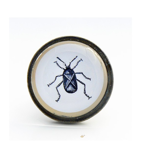 Bouton de meuble insecte cafard - Cabinet de curiosités - Boutons Mandarine
