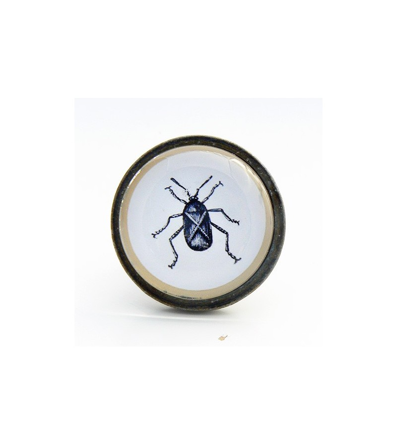 bouton de meuble insecte cafard cabinet de curiosit s boutons. Black Bedroom Furniture Sets. Home Design Ideas