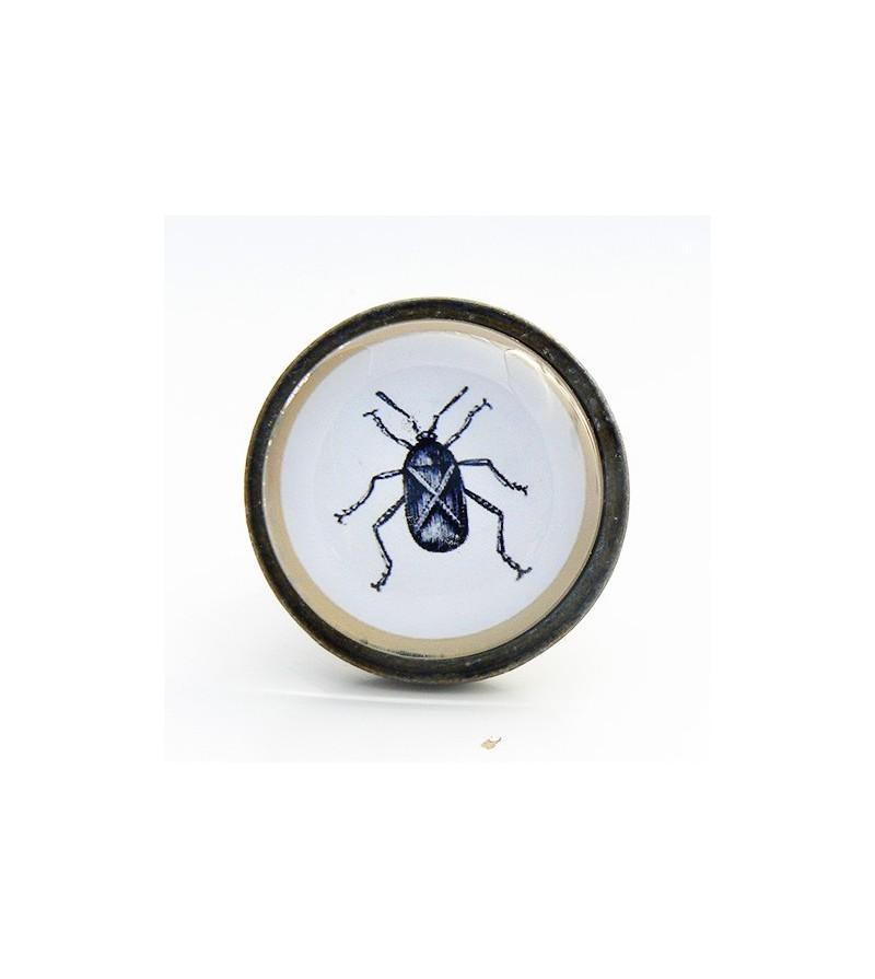 Bouton de meuble insecte cafard cabinet de curiosit s for Meuble cabinet de curiosite