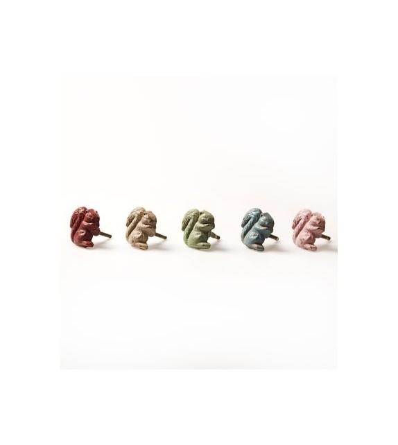 Bouton de meuble écureuil - 5 couleurs disponibles - Boutons Mandarine